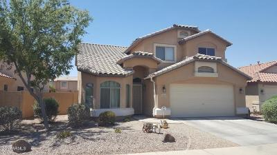 Maricopa Single Family Home For Sale: 42049 W Colby Drive