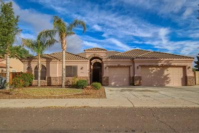 Queen Creek Single Family Home For Sale: 20440 E Appaloosa Drive