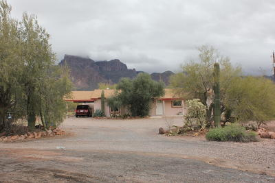 Apache Junction Single Family Home For Sale: 565 S Camino Sereno