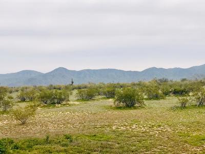 Surprise Residential Lots & Land For Sale: 253xxx W Monona Drive