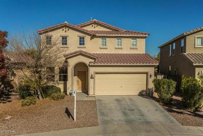 Maricopa Rental For Rent: 42468 W Palmyra Lane