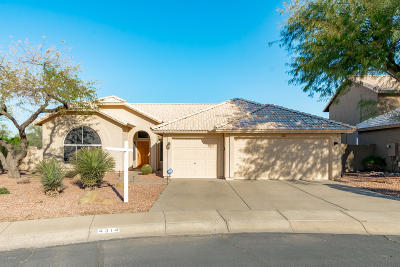 Cave Creek Single Family Home For Sale: 4314 E Rancho Tierra Drive