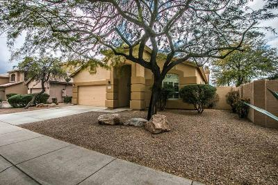 Cave Creek Single Family Home For Sale: 28642 N 46th Way