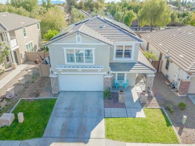 Surprise Single Family Home For Sale: 17151 W Statler Street