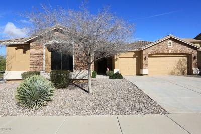 Maricopa Single Family Home For Sale: 41998 W Monteverde Court
