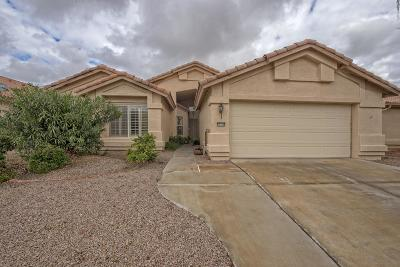 Goodyear Single Family Home For Sale: 15114 W Vale Drive