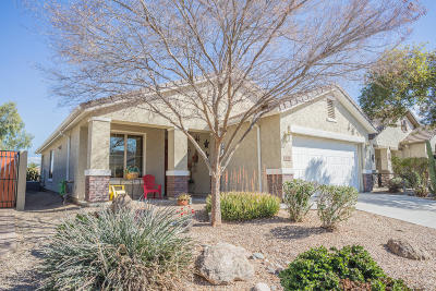 San Tan Valley Single Family Home For Sale: 676 W Twin Peaks Parkway