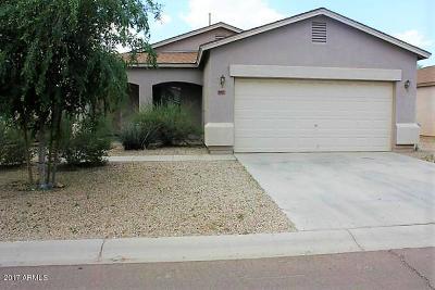 San Tan Valley Single Family Home For Sale: 957 E Desert Rose Trail