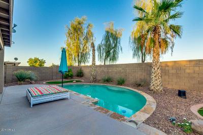 Maricopa Single Family Home For Sale: 21777 N Dietz Drive