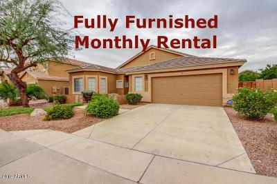 Augusta Ranch, Augusta Ranch Golf, Augusta Ranch Parcel 1 Rental For Rent: 2727 S Drexel