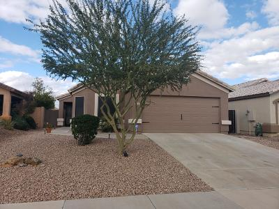 Queen Creek Single Family Home For Sale: 3784 W Carlos Lane