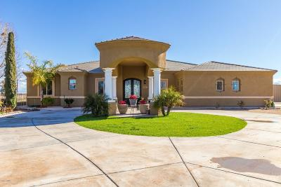 Casa Grande Single Family Home For Sale: 4757 N Signal Peak Road
