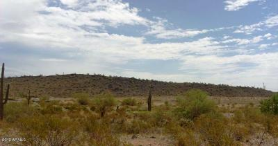 Peoria Residential Lots & Land For Sale: 30585 W Sage Drive