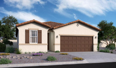 Maricopa Single Family Home For Sale: 44264 W Palo Olmo Road