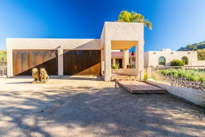 Paradise Valley Single Family Home For Sale: 7131 N Quartz Mountain Road