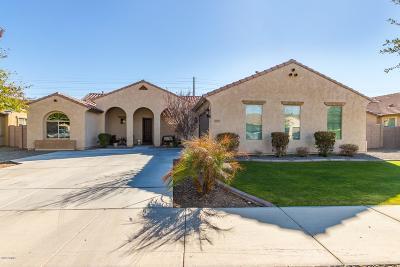 Queen Creek Single Family Home For Sale: 21957 E Estrella Road