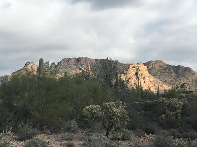 Apache Junction Residential Lots & Land For Sale: 393 W Canyon Street