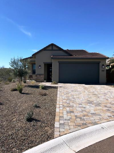 Wickenburg Single Family Home For Sale: 3710 Goldmine Canyon Way