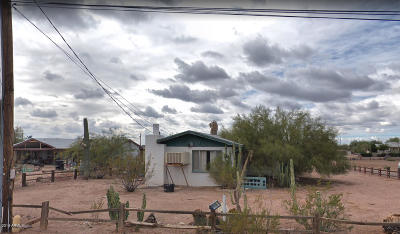 Apache Junction Single Family Home For Sale: 238 N Chaparral Road