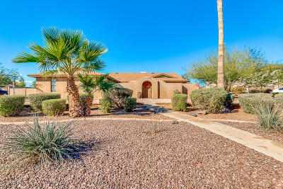 Chandler Single Family Home For Sale: 2304 N Bullmoose Drive