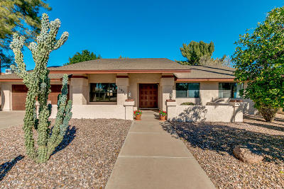 Tempe Single Family Home For Sale: 1956 E Vaughn Street