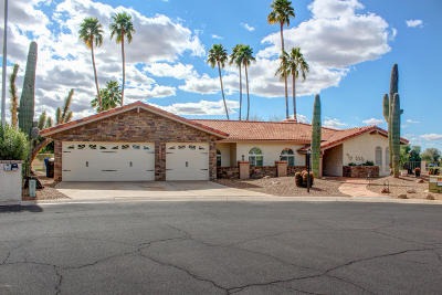 Mesa Single Family Home For Sale: 6349 E Camelot Drive
