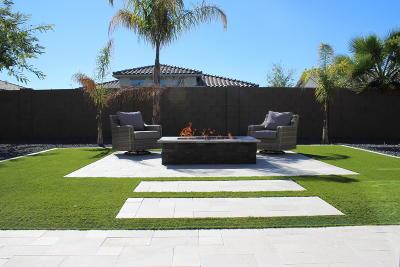 Peoria Single Family Home For Sale: 8967 W Diana Avenue