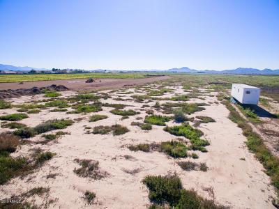 Buckeye Residential Lots & Land For Sale: 223xx W Mc 85 Highway