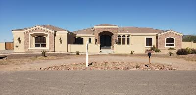 Queen Creek Single Family Home For Sale: 20524 E Navajo Drive