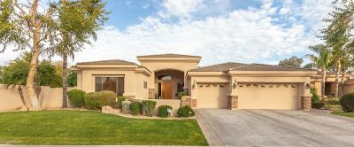 Chandler Single Family Home For Sale: 4601 S Ambrosia Court
