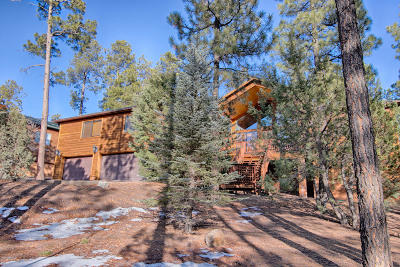 Pinetop Single Family Home For Sale: 2459 S Pine Wood Lane
