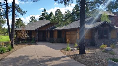 Flagstaff Single Family Home For Sale: 4720 W Braided Rein