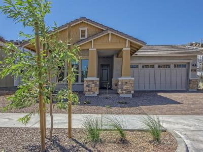 Phoenix Single Family Home For Sale: 2053 W Trotter Trail