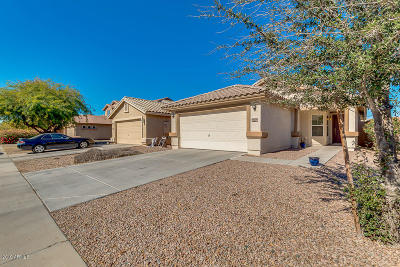 Maricopa Single Family Home For Sale: 41270 W Little Drive