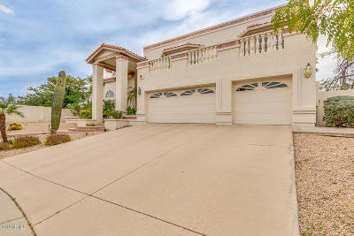 Phoenix Single Family Home For Sale: 1211 E Tierra Buena Lane