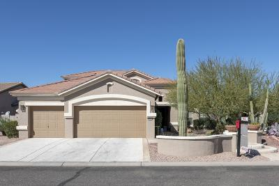 Goodyear, Waddell Single Family Home For Sale: 3244 N 162nd Drive