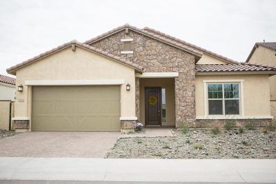 Mesa Single Family Home For Sale: 9705 E Telemetry Drive