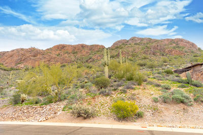 Gold Canyon Residential Lots & Land For Sale: 5205 S Avenida Corazon De Oro