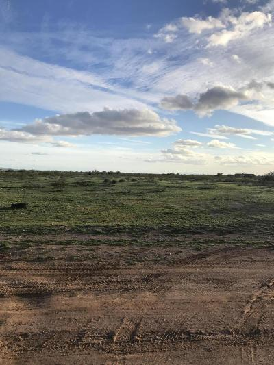 Wittmann Residential Lots & Land For Sale: 309xx W Forest Pleasant Place