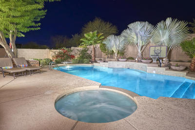 Phoenix Single Family Home For Sale: 3724 E Maffeo Road