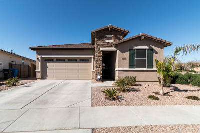 Tolleson Single Family Home For Sale: 1606 S 104th Lane