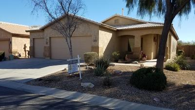 San Tan Valley Single Family Home For Sale: 265 E Dry Creek Road