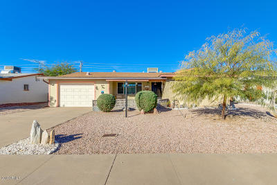 Apache Junction Single Family Home For Sale: 1178 S Ocotillo Drive