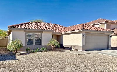 Mesa AZ Single Family Home For Sale: $299,900