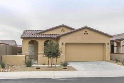 Goodyear Single Family Home For Sale: 17873 W Silver Fox Way