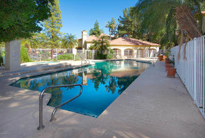 Mesa Rental For Rent: 1101 S Sycamore Street #227