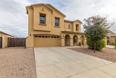 San Tan Valley Single Family Home For Sale: 38275 N Armadillo Drive