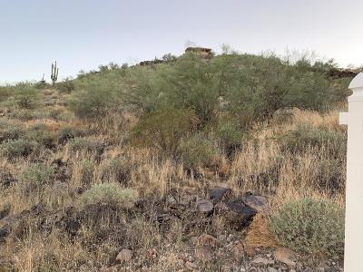 Phoenix Residential Lots & Land For Sale: W Blue Eagle Lane