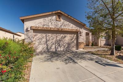 San Tan Valley Single Family Home For Sale: 1736 E Desert Rose Trail