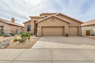 Cave Creek Single Family Home For Sale: 4619 E Roy Rogers Road